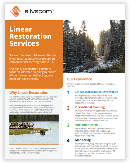 Linear Restoration Services